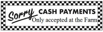 cash payments only accepted